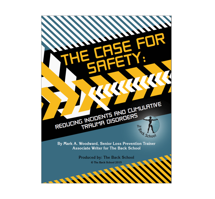 The Case For Safety eBook