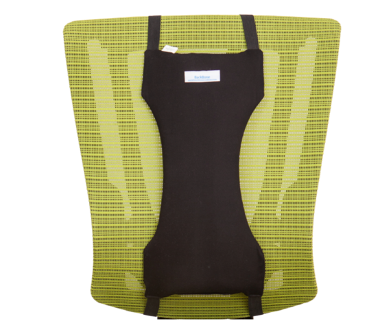 Backbone Cushion Mid-Back Posture Support
