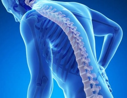 Ask the Experts: Body Mechanics for the Non-medical Provider